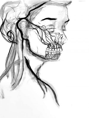 Flor-Mora-les-beaux-maxillaires-Ybackgalerie-ARTree